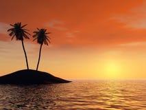 Coucher du soleil sur un fond des branchements des palmiers Images libres de droits