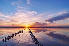 Coucher du soleil sur un lac de sel rose, une ancienne mine pour l'extraction du sel rose rangée des chevilles en bois envahies a image libre de droits
