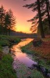 Coucher du soleil sur un lac lointain forest Photos stock