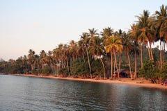 Coucher du soleil sur une Palm Beach Photographie stock libre de droits