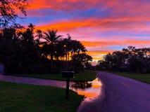 coucher du soleil sur une rue avec des palmiers photographie stock libre de droits