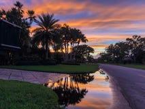 coucher du soleil sur une rue avec des palmiers images stock