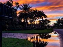 coucher du soleil sur une rue avec des palmiers photos libres de droits