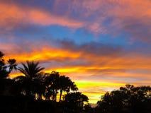 coucher du soleil sur une rue avec des palmiers images libres de droits