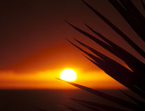 Coucher du soleil, Ténérife, Îles Canaries, Espagne Image stock