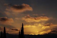 Coucher du soleil tôt dans des nuages avec les cimes d'arbre et le plancher lumineux de nuage Images stock