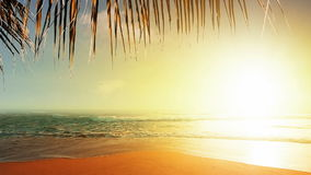 Coucher du soleil étonnant clips vidéos