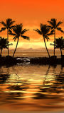 Coucher du soleil tropical image stock