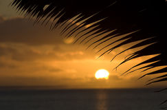 Coucher du soleil tropical Photo libre de droits