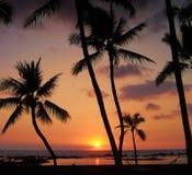 Coucher du soleil tropical Photographie stock