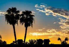 Coucher du soleil tropical avec deux silhouettes des palmiers Images libres de droits