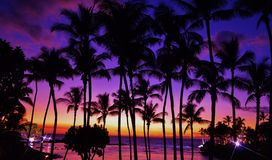 Coucher du soleil tropical brillant photos libres de droits