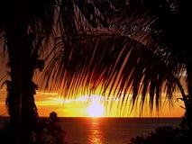 Coucher du soleil tropical d'île Images stock