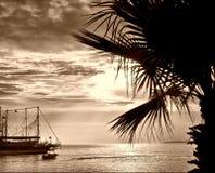 Coucher du soleil tropical dans la sépia. Image stock