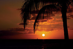 Coucher du soleil tropical en Hawaï photos stock