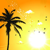 Coucher du soleil tropical, palmiers illustration stock