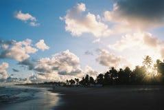 Coucher du soleil tropical - texture visible de film. Image libre de droits