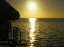 Coucher du soleil vert Image stock