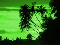 Coucher du soleil vert Photos stock