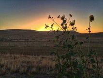 Couchers du soleil de Hwy Images stock