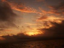 Couchers du soleil de la Floride Images libres de droits
