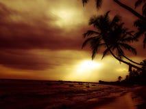 Couchers du soleil hypnotisants image stock