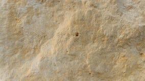 Couches de roche de dolomite de Diplopora Stylo pour l'échelle photos libres de droits