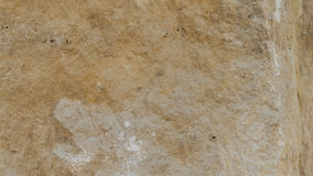 Couches de roche de dolomite de Diplopora Stylo pour l'échelle photo libre de droits