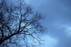 Coudy-Himmel Stockbilder