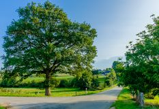 Couesmes Crossroad stock images