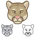 Cougar Faces Stock Photo