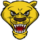 Cougar Mascot Head Stock Photography