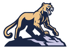 Cougar mascot standing on the rock Royalty Free Stock Photo