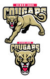 Cougar mascot. Vector of cougar mascot, head can separate easily Stock Photo