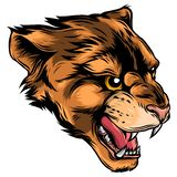 Cougar Panther Mascot Head Vector Graphic illustration vector illustration