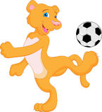 Cougar (puma)  cartoon with soccer ball Stock Photos