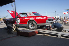 Cougar race car Stock Photos