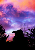 Cougar stalking and sunset. Silhouette of cougar stalking prey from a big boulder rock on top of a mountain in the forest against beautiful dramatic sunset sky Royalty Free Stock Photos