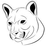 Cougar, tattoo Royalty Free Stock Photos
