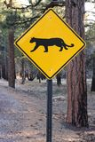 Cougar warning Royalty Free Stock Photography