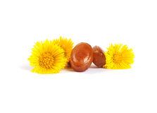 Cough drops with coltsfoot flowers Stock Photo