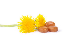 Cough drops with dandelion flowers. Colorful and crisp image of cough drops with dandelion flowers Stock Photo
