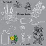 Cough medicine Royalty Free Stock Photos