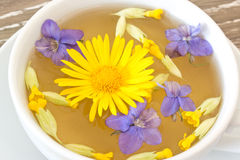Cough tea with coltsfoot violets cowslip Royalty Free Stock Images