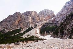Coulée de boue avec la haute de neige dans les montagnes alpines images libres de droits