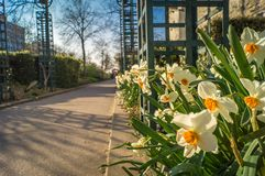 Coulee verte walk in Paris. In spring, also called promenade plantee Royalty Free Stock Images