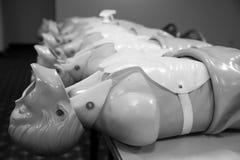 Couleur beige de moule de corps humain, mannequin en plastique à la mode, 3d m Image stock