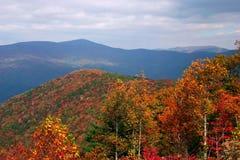 Couleur d'automne Photos stock