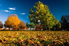 Couleur d'automne au cimetière national de Gettysburg, Pennsylvanie Photographie stock libre de droits