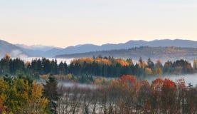 Couleur d'automne au stationnement de lac deer images libres de droits